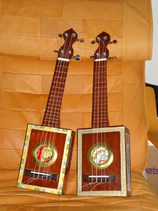 Twin Ukuleles, front view